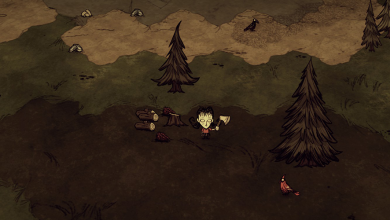 Photo of Don't Starve