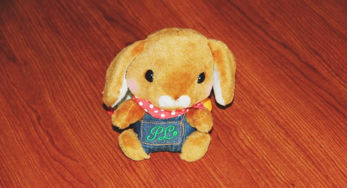 YumeTwins Tavşan
