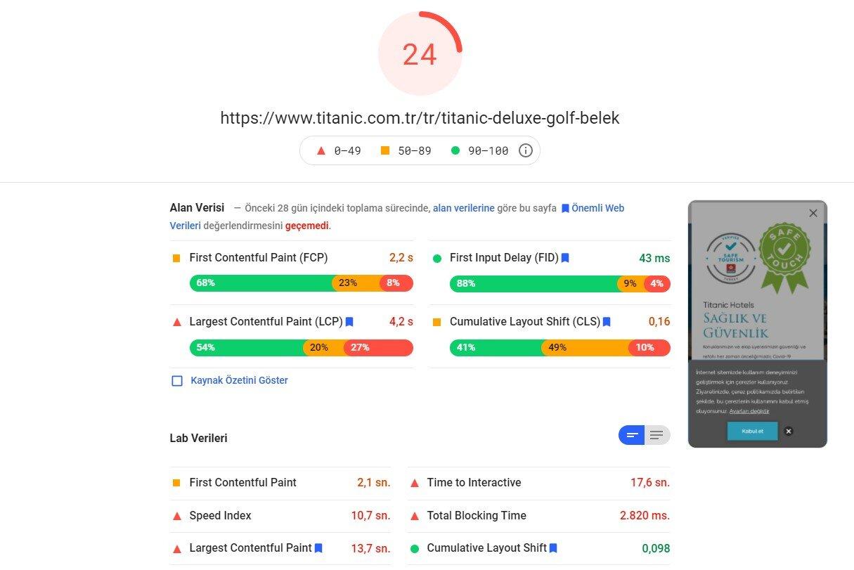 Otel Sitesi Mobil Pagespeed Skoru